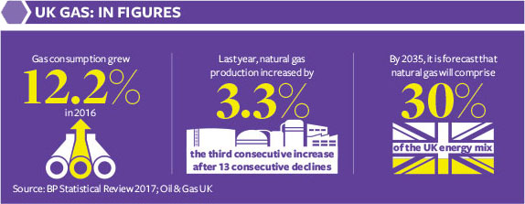 UK Gas: In figures Infographic